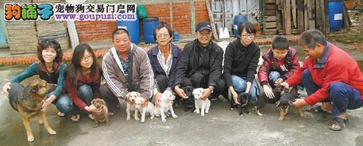 宠物狗丧葬业逐渐火热,40斤以上的狗狗火化要上千元