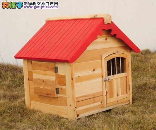 给室外的狼犬一个温暖的家——狗屋