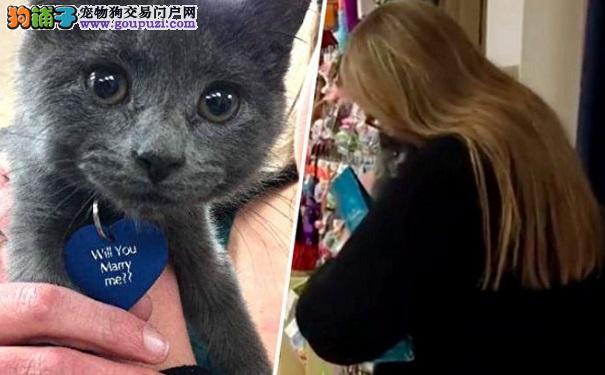 善良女子领养小猫 没想到猫咪名牌上写着一个惊喜