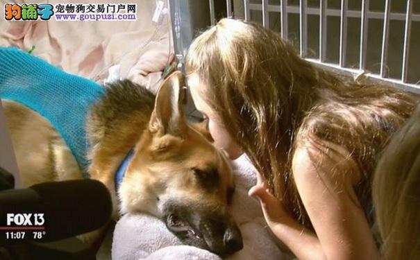 领养狗狗后院蹿高 新主人惊见它替7岁女儿挡开了什么