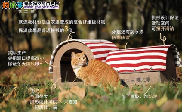 """陈乔恩舒淇助力""""衣二三衣起爱""""公益活动"""