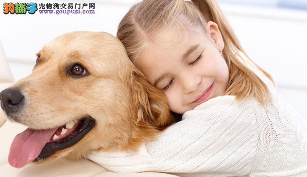 """狗狗喜欢""""咬人""""的几大因素"""