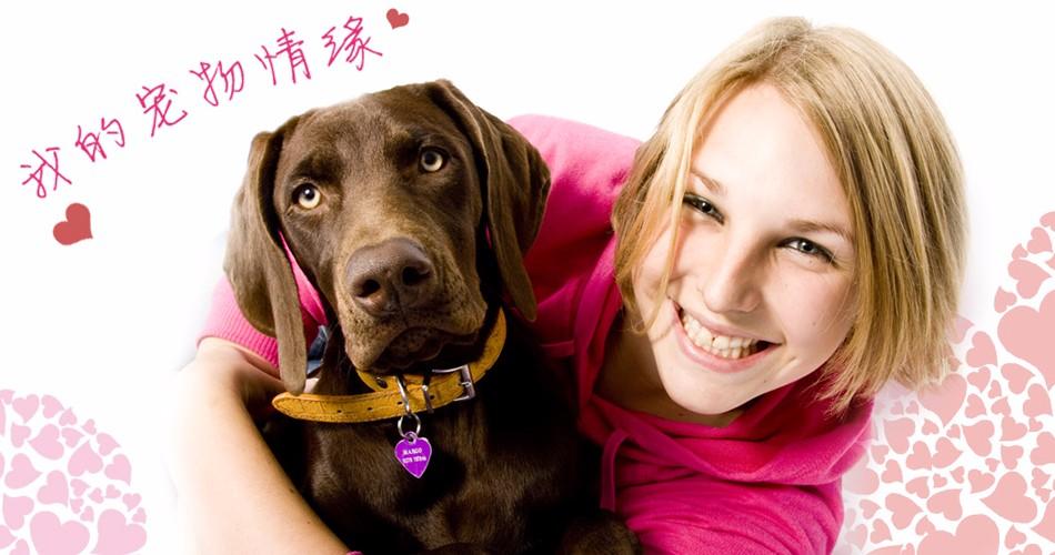自家狗场繁殖直销泰迪犬幼犬爱狗人士优先狗贩勿扰