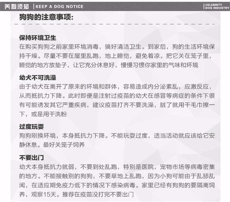 广州出售泰迪犬 纯种健康茶杯泰迪幼犬签协议可见父母17