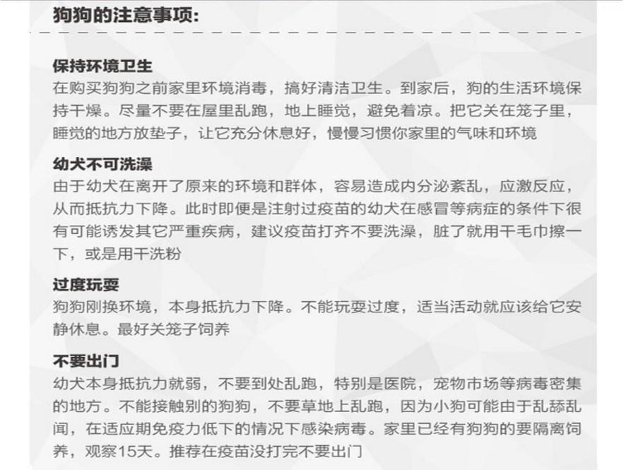 广州哪里有卖哈士奇 哈士奇价格 广州买哈士奇多少钱11