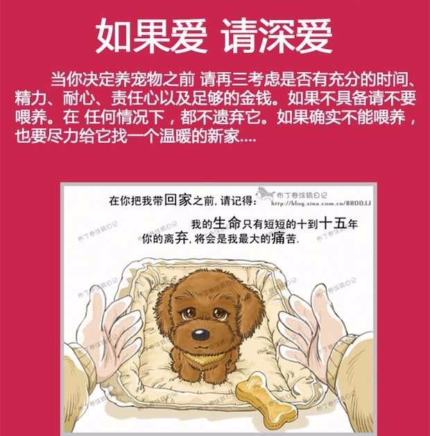 昆明大型犬舍出售萌萌哒哈士奇幼犬 疫苗齐全放心选购9