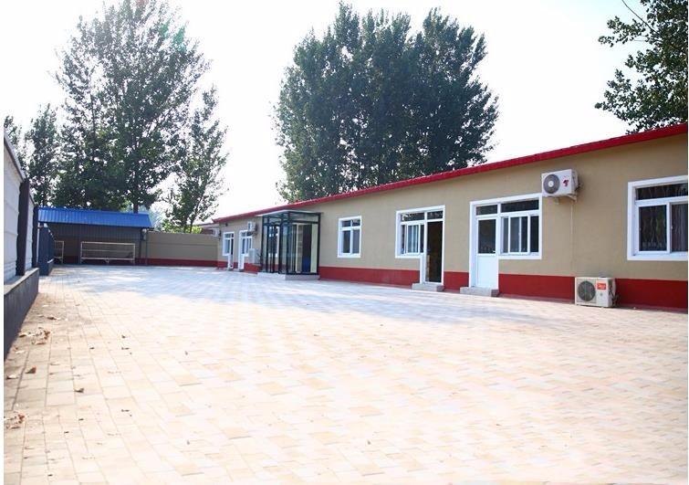 正规狗场直销双十字阿拉斯加雪橇犬 哈尔滨有实体犬舍11