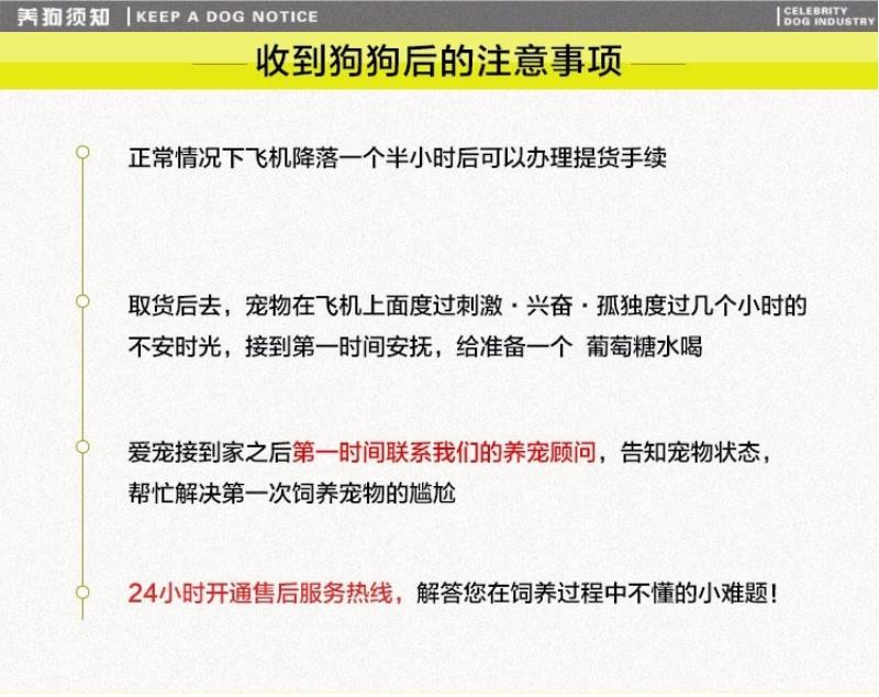 低价热销京巴、CKU品质绝对保证、三年质保协议10