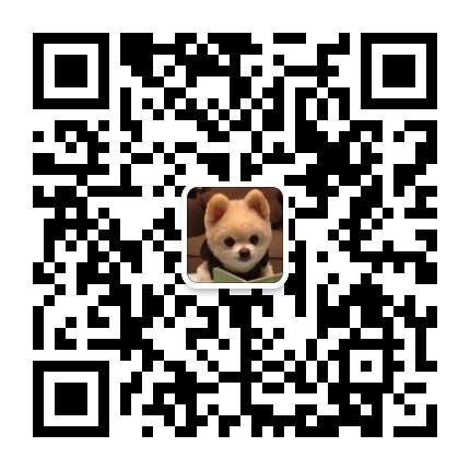 南京哪里出售古牧 古代牧羊犬出售 古牧照片5