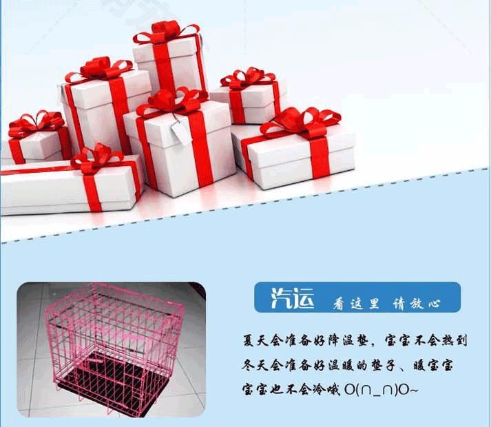 杭州家养精品茶杯犬玩具泰迪犬贵宾狗宠物狗包健康9