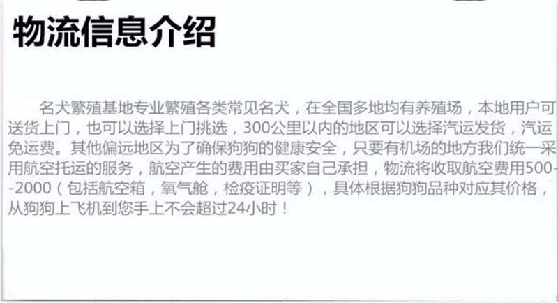 韩国引进萌系佛山泰迪犬出售 随时电话咨询服务24小时8