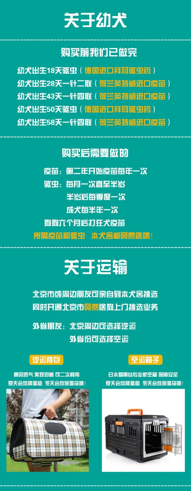 天津本地养殖基地出售韩系泰迪犬 有问题可来退换7