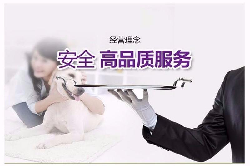 杭州韩系超小体玩具犬泰迪熊宝宝售品质保终身签协议16