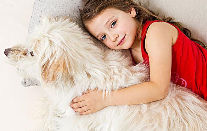 你家的爱犬究竟有多爱你?(2)