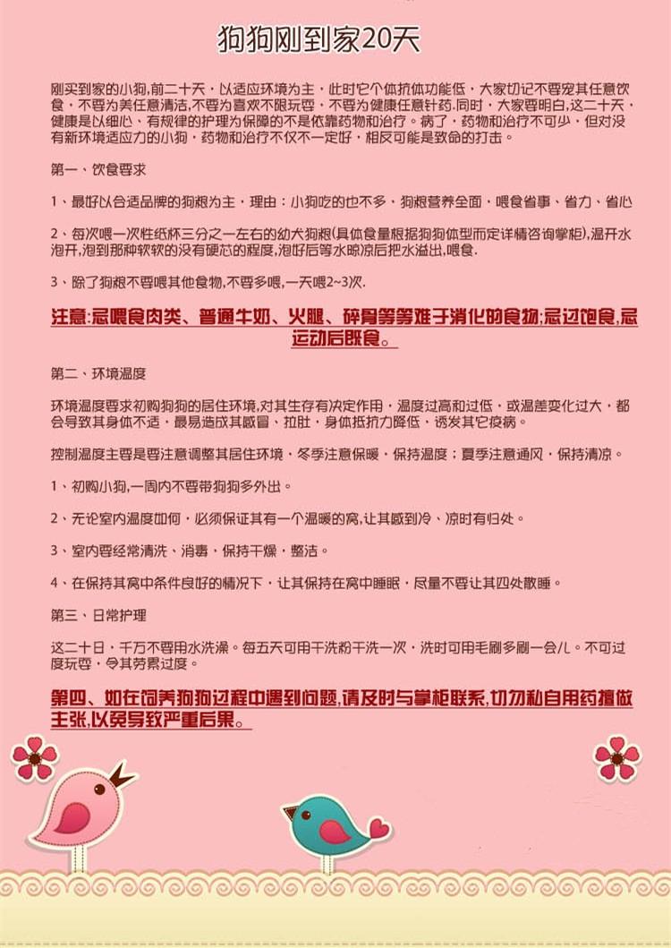 低价转让纯种九江松狮犬公母都有购买签订活体协议11