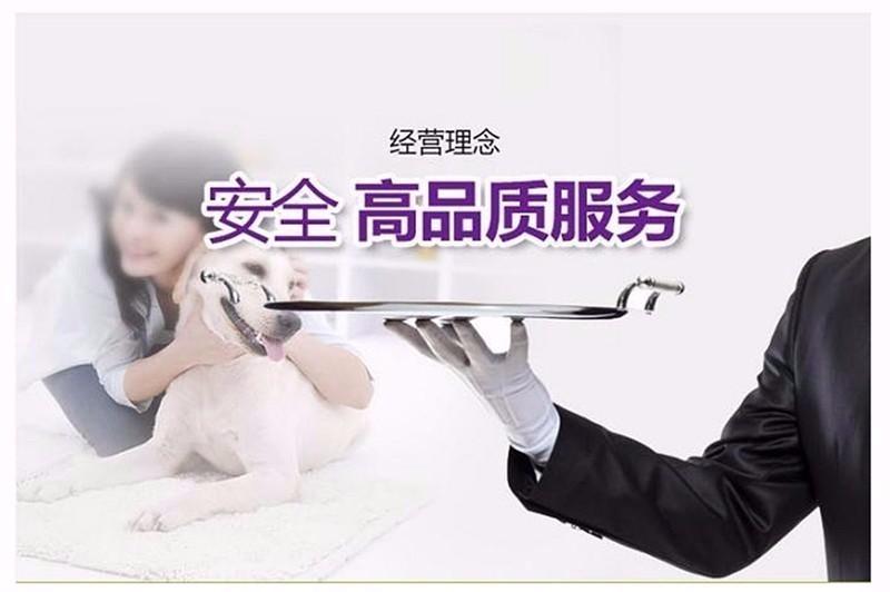 专业的格力犬犬舍终身保健康爱狗人士优先6