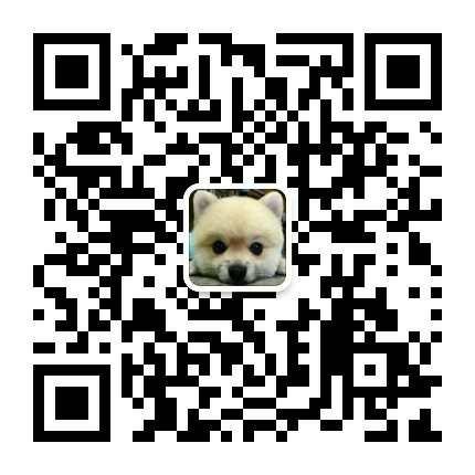 大理州自家繁殖二哈出售蠢萌气质哈士奇温顺开朗家庭犬14