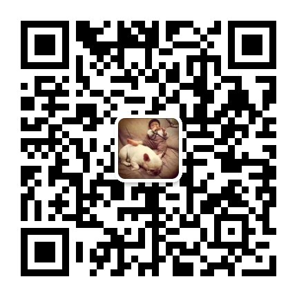 厦门出售颜色齐全身体健康大丹犬微信选狗直接视频5