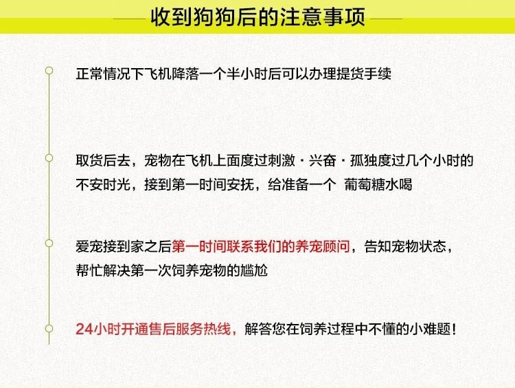 郑州直销金毛幼犬 终生包纯种包健康包养活签协议10