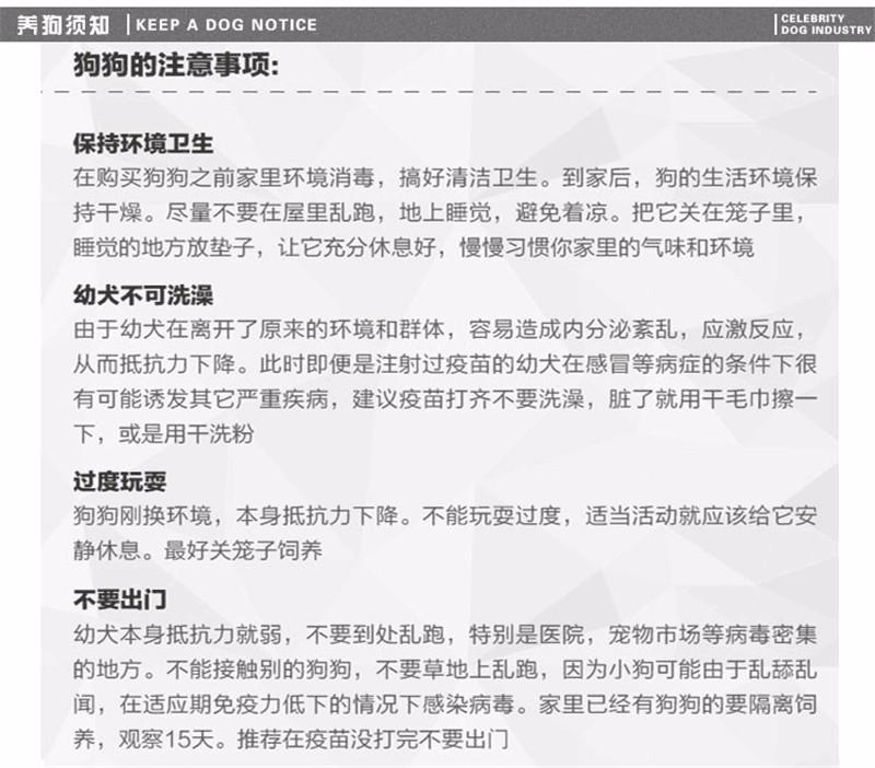 深圳哪里有卖沙皮狗 沙皮狗多少钱一只9