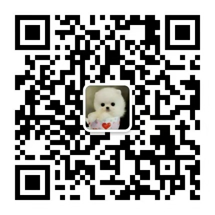 西宁专业的大白熊犬舍终身保健康实物拍摄直接视频5