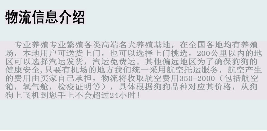 专业犬舍出售精品绵阳哈士奇犬可放心购买12