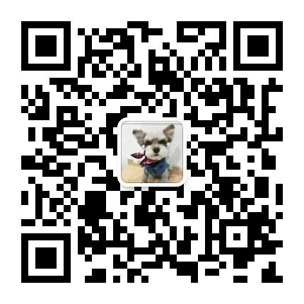 纯种可爱的济南雪纳瑞幼犬找爸爸妈妈 终身免费售后5