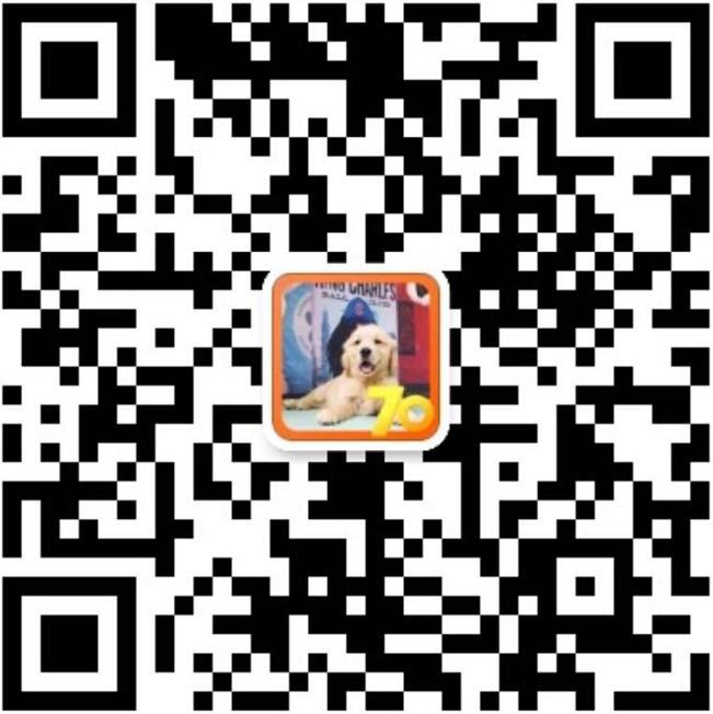 纯种犬培育中心售高品质喜乐蒂犬签质保三年可送货5