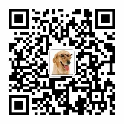 十字脸品相超棒的阿拉斯加犬找新家 呼和浩特市内送货5