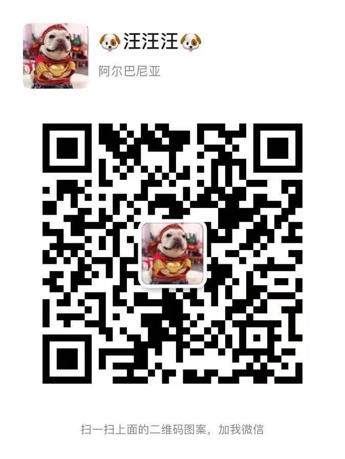 欢迎上门选购精品韩系血统青岛贵宾犬 免费接种疫苗5
