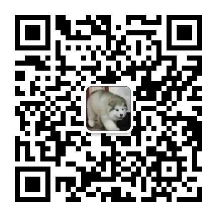 繁殖基地出售多种颜色的中亚牧羊犬价格美丽非诚勿扰5