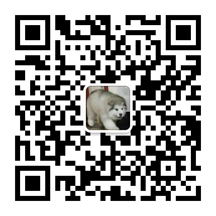 繁殖基地出售多种颜色的中亚牧羊犬价格美丽非诚勿扰14