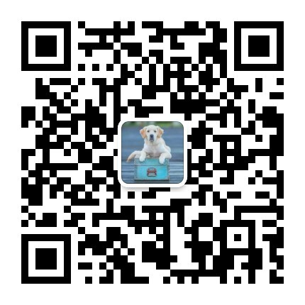 纯种德国牧羊犬幼犬,实物拍摄直接视频,签订终身合同14