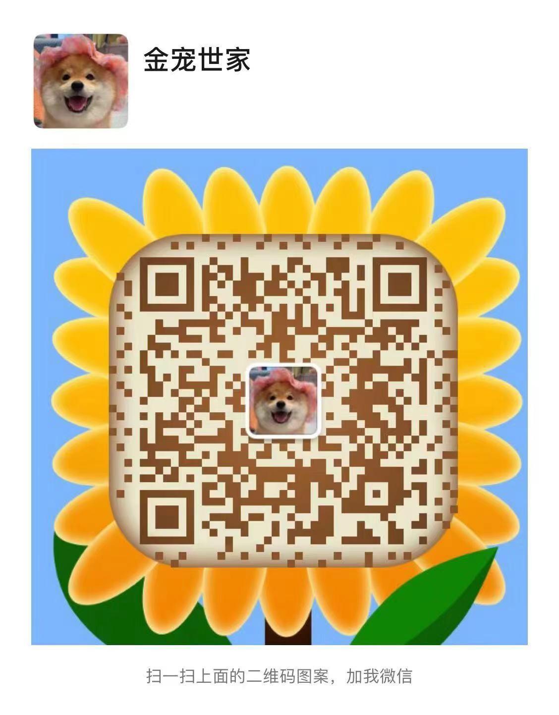 八折出售广州斗牛犬 驱虫疫苗做完 请您放心选购12