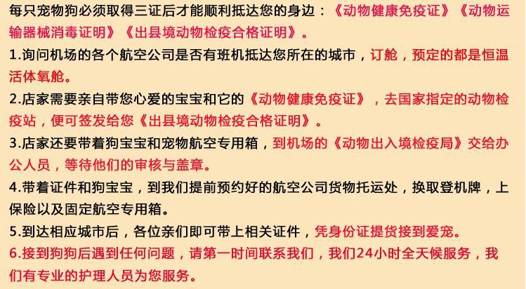 出售重庆古代牧羊犬专业缔造完美品质假一赔万签活体协议