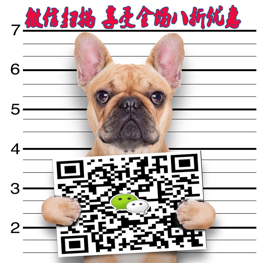 低价怎么卖纯种哈多利版博美犬 杭州周边地区可送狗5