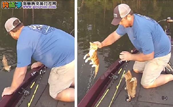 他们乘船到河里钓鱼 孤岛上游来2只小猫咪