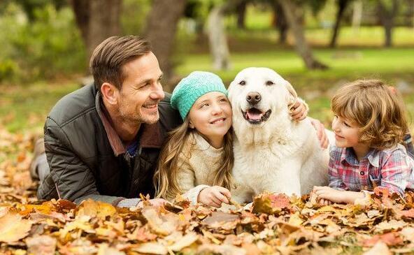 狗狗会成为孩子的美好回忆,看这些照片真实暖爆啦8