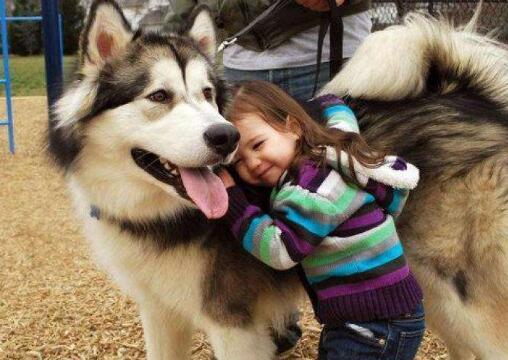 狗狗会成为孩子的美好回忆,看这些照片真实暖爆啦6