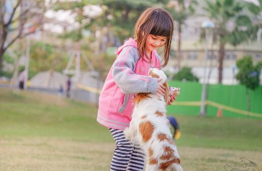 狗狗会成为孩子的美好回忆,看这些照片真实暖爆啦7
