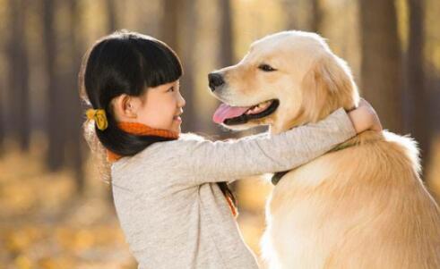 宠物狗是不是有钱人才能养?究竟贵不贵5