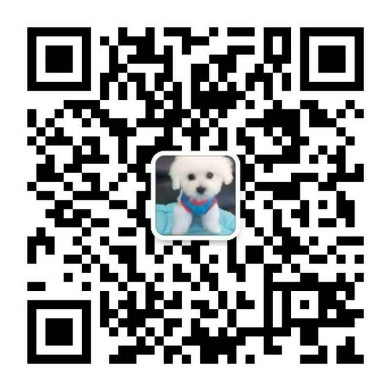 云南买狗迪庆卖纯种阿拉斯加小狗专业狗场直销已做驱虫疫苗