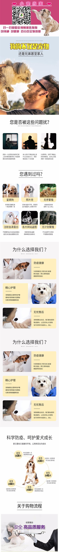 出售精品博美犬 打完疫苗证书齐全 提供养狗指导5