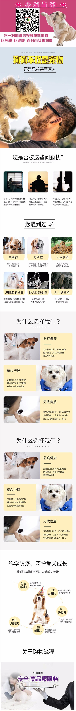 出售精品吉娃娃 打完疫苗证书齐全 提供养狗指导5
