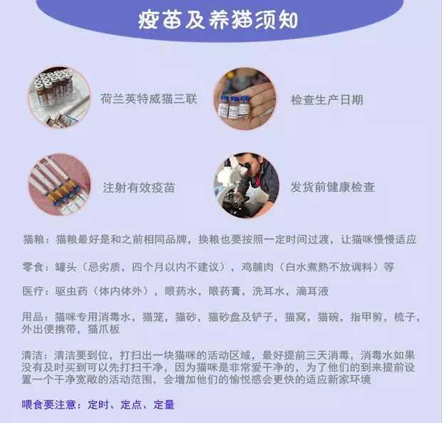 正规CFA猫舍 纯种育苗齐全 出售全品种猫咪活体9