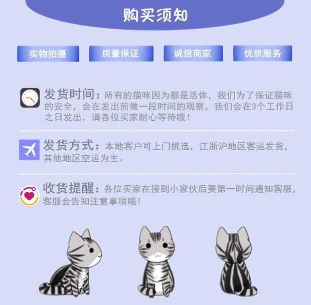 正规CFA猫舍 纯种育苗齐全 出售全品种猫咪活体10