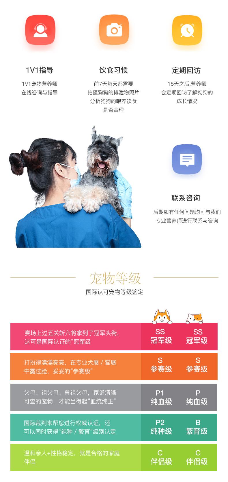 中亚牧羊犬纯种坎高犬幼犬巨型中亚牧羊犬活体土耳其坎高犬9