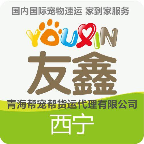 西宁友鑫宠物托运青海总代理全国宠物托运连锁机构