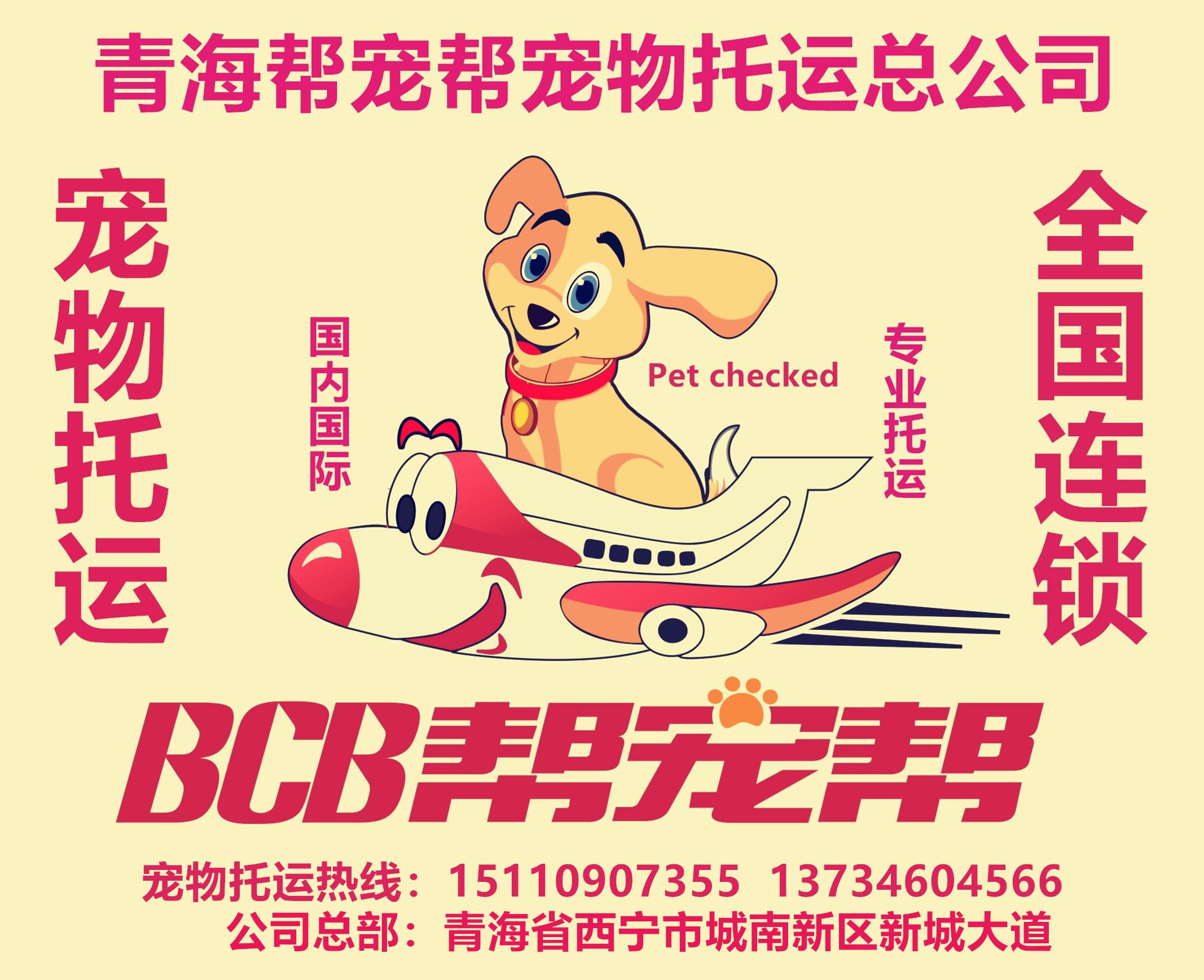 西宁帮宠帮宠物托运公司首家青海自主注册品牌宠物托运
