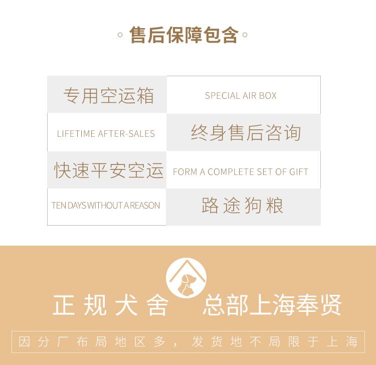 健康纯种京巴犬怎么卖 包养活 签协议 送宠物用品10